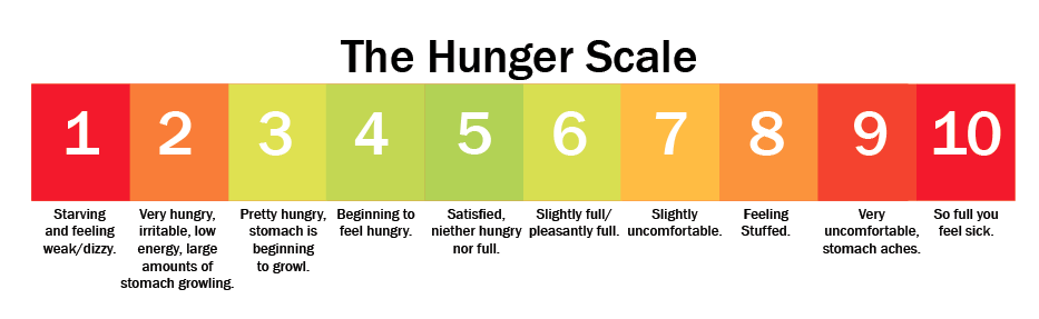 Hunger and Satiety