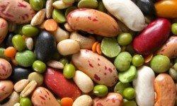 Gotta love legumes!